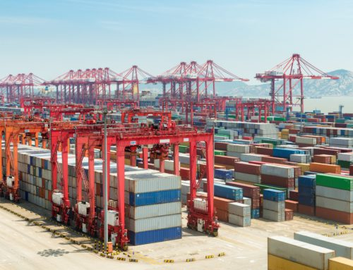 Digital Container Shipping Association launched by major container lines